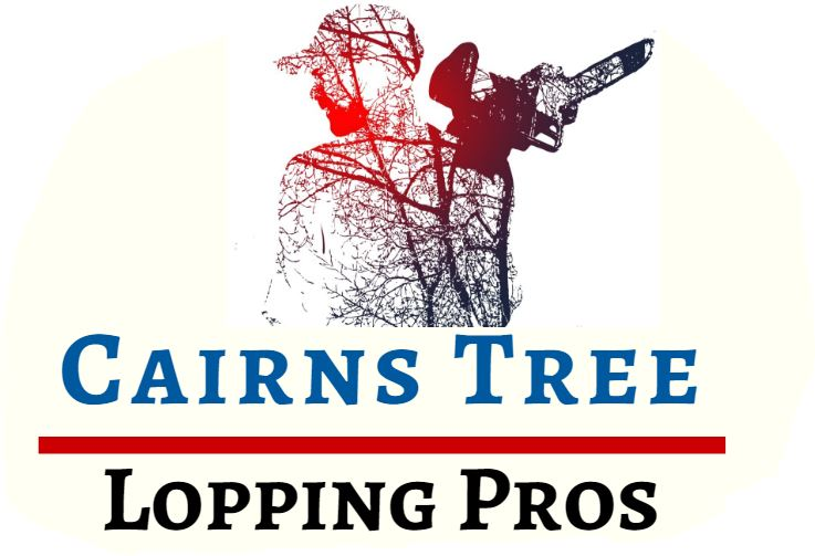 Cairns Tree Lopping Pros